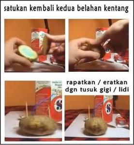 satukan-kentang